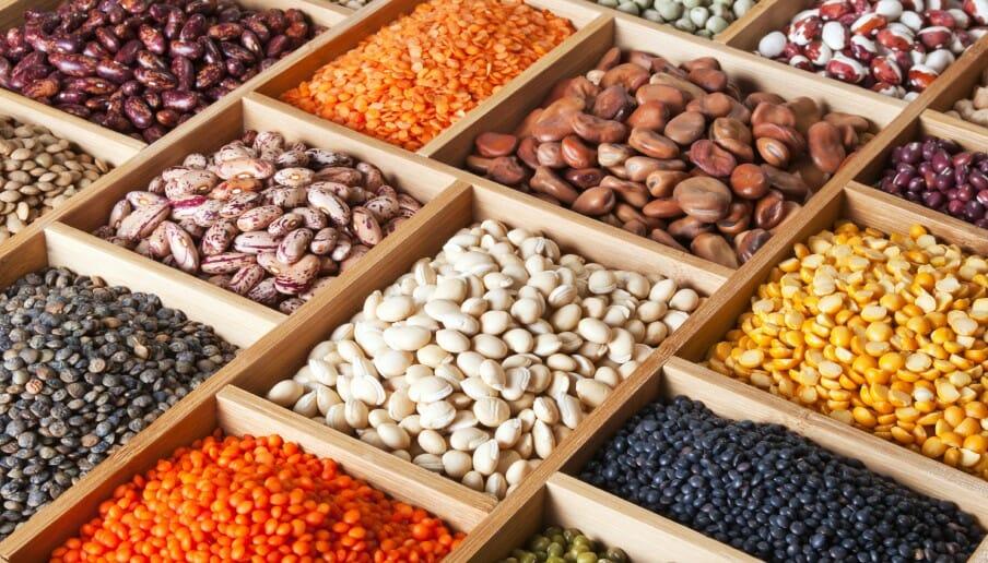 Les haricots : autant de vertus que de variétés