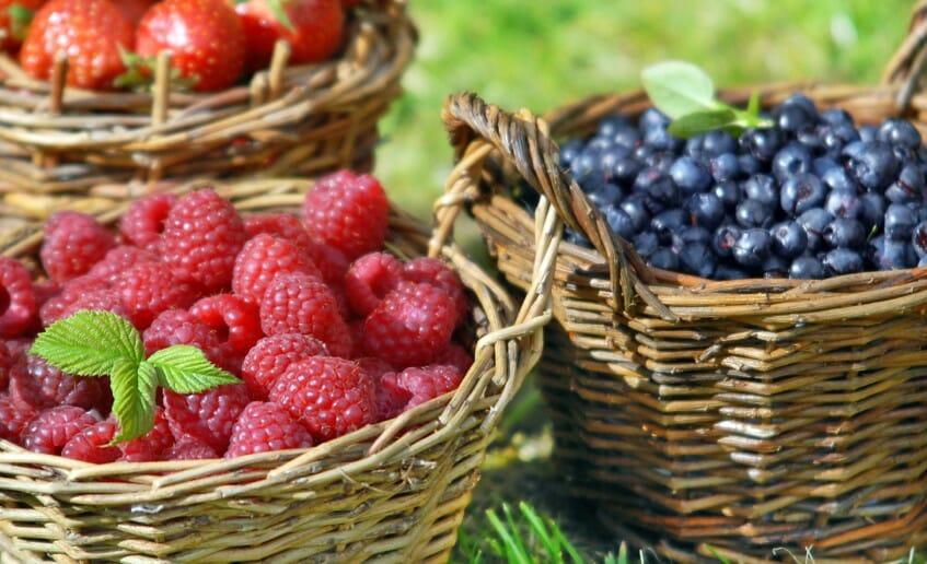 Les fruits rouges atout santé