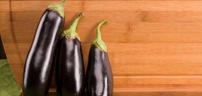 L'aubergine : une alliée pour maigrir ?