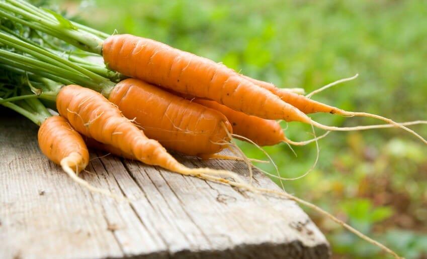 La carotte fait elle maigrir ou grossir