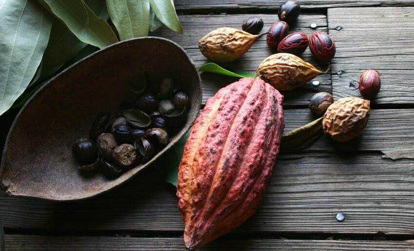 Le cacao est un allié ou un ennemi ?