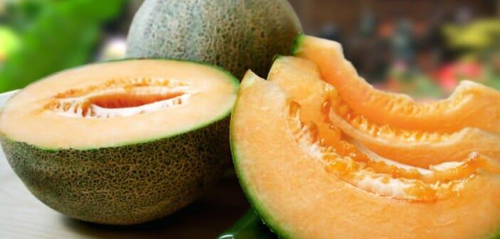 Le melon est il calorique ?