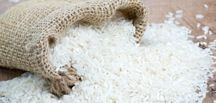 Le riz blanc est-il calorique ?