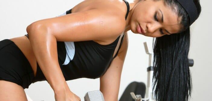 Le triceps brachial un muscle a travailler
