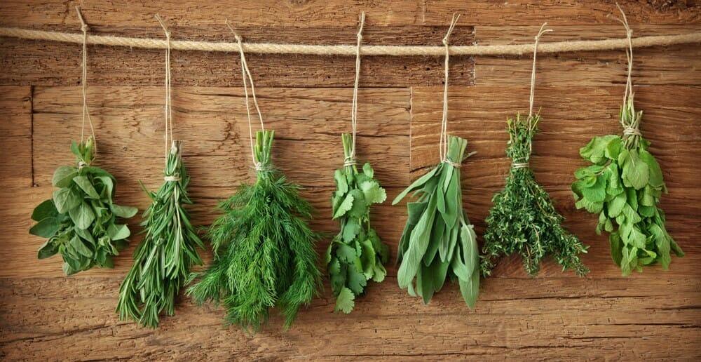Les herbes dans le cadre d'un régime