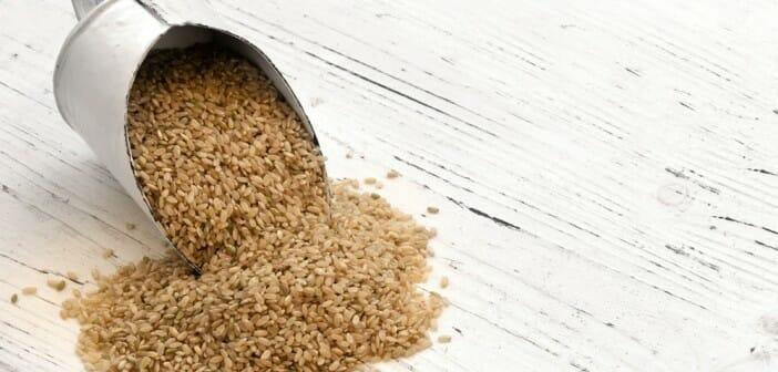 Faire une cure de riz complet fait-il maigrir ?