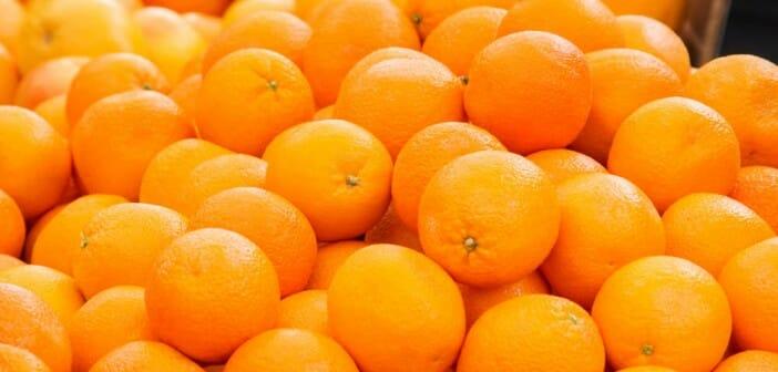 L'orange fait-elle grossir ?