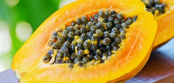 La papaye fait-elle maigrir ?