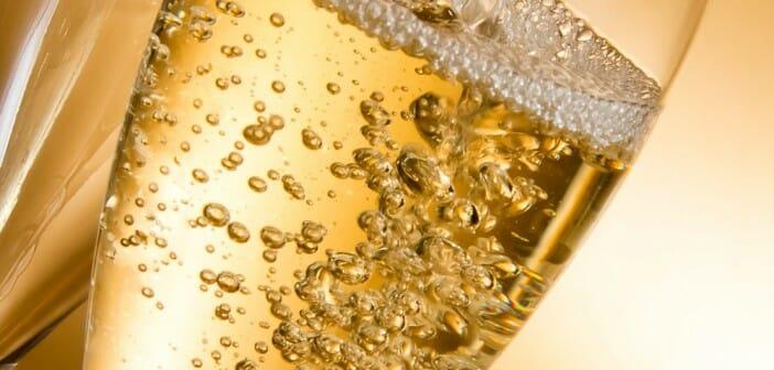 Le champagne fait-il maigrir ?