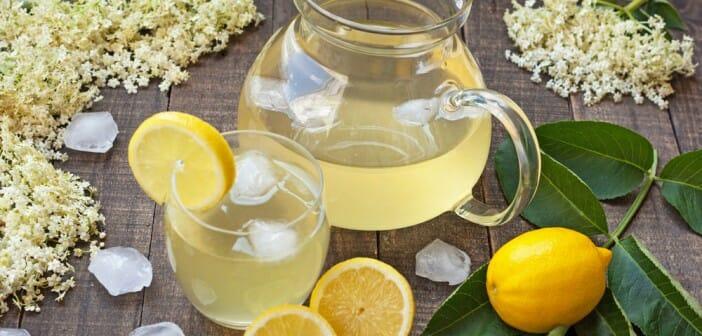 Le sirop de citron fait il grossir le blog - Le potimarron fait il grossir ...