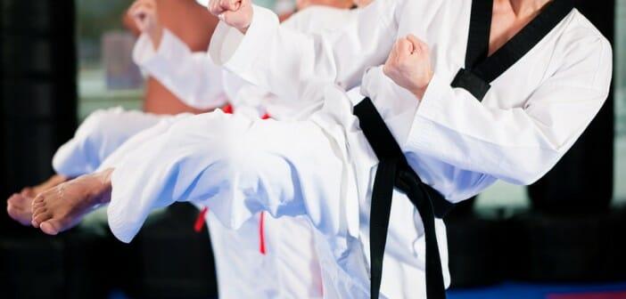 le taekwondo fait il maigrir le blog. Black Bedroom Furniture Sets. Home Design Ideas
