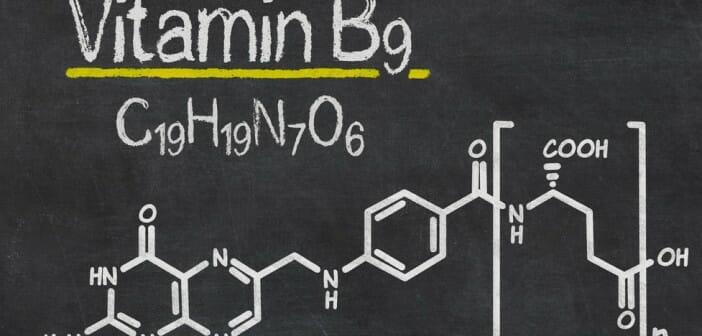 L acide folique fait il grossir le blog - Le potimarron fait il grossir ...