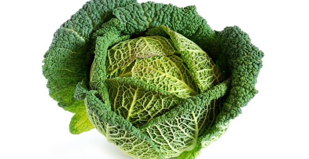 Le roi des légumes : le chou Kale