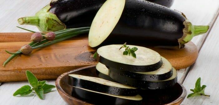 Le caviar d aubergine fait il grossir le blog - Le potimarron fait il grossir ...