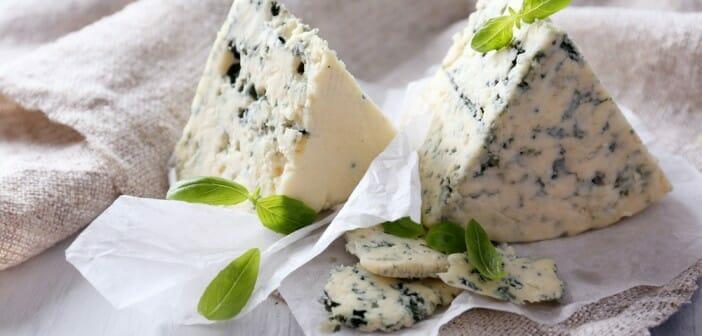 Le fromage bleu fait il grossir le blog - Le potimarron fait il grossir ...