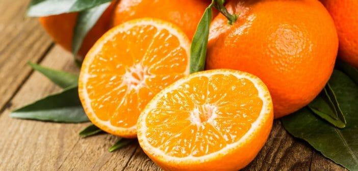 l-orange-pour-avoir-un-ventre-platl-orange-pour-avoir-un-ventre-plat