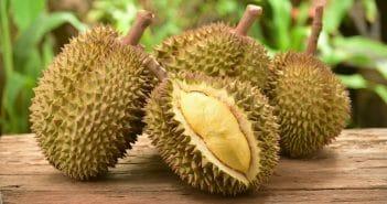 le-durian-fait-il-maigrir