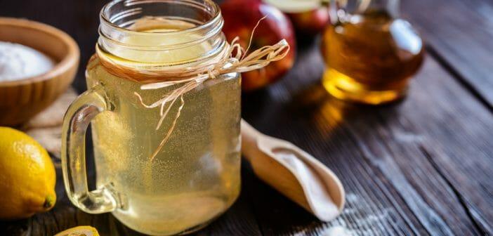 vinaigre de cidre de pomme maigrir forum