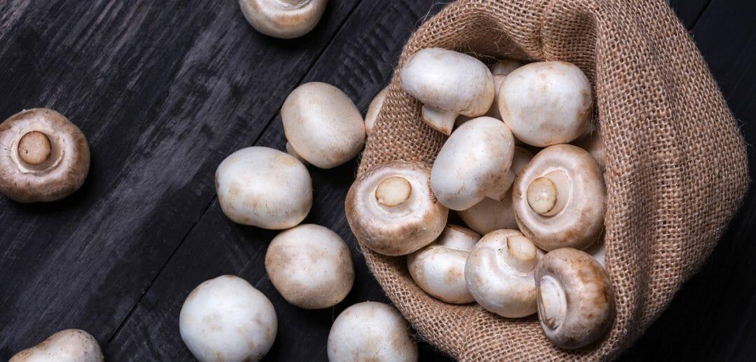 Les champignons de Paris font-ils maigrir ?