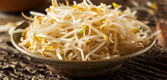 Les germes de soja votre alli minceur le blog - Cuisiner les germes de soja ...