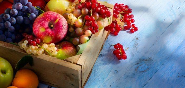 Manger des fruits le soir fait-il maigrir ? - Le blog