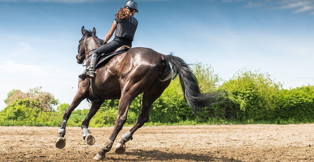 L'équitation fait grossir les cuisses : vrai ou faux