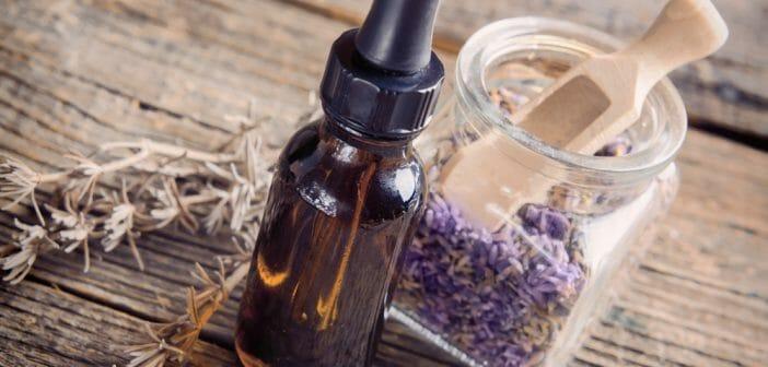 L'huile essentielle de lavande pour maigrir ? - Le blog