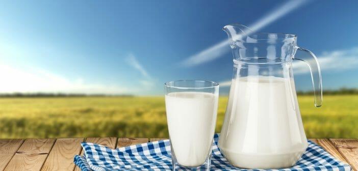 Le lait de brebis fait il grossir le blog - Le potimarron fait il grossir ...
