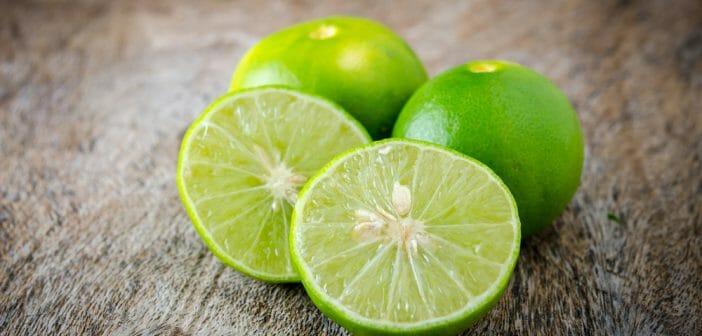 Le Pulco citron vert fait-il maigrir ? - Le blog Anaca3.com