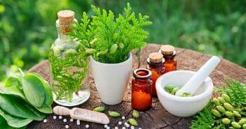 liste-des-pilules-pour-maigrir-a-base-de-plantes