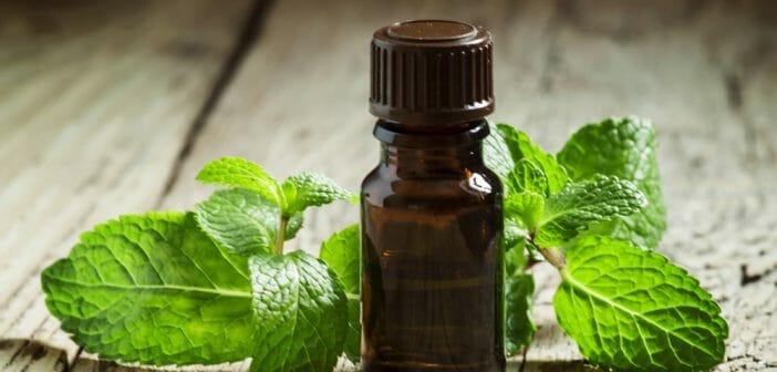 Maigrir avec l huile essentielle de menthe poivr e le blog - Huiles essentielles coupe faim maigrir ...