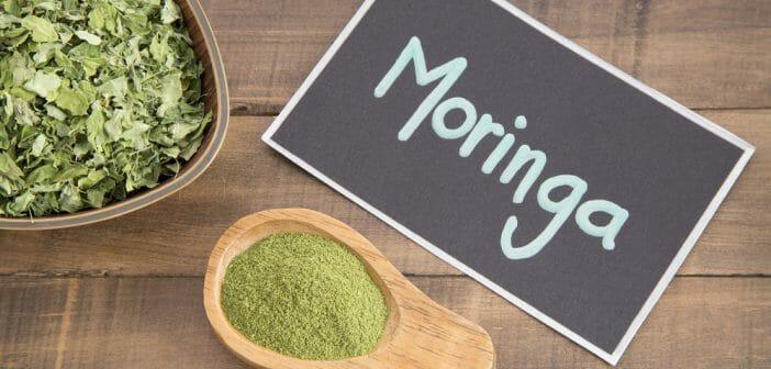 Maigrir avec la poudre de moringa ? - Le blog Anaca3.com