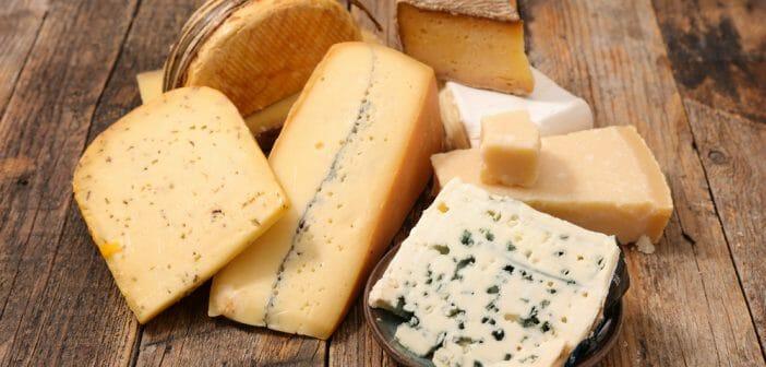 manger du fromage tous les jours fait il grossir le blog. Black Bedroom Furniture Sets. Home Design Ideas