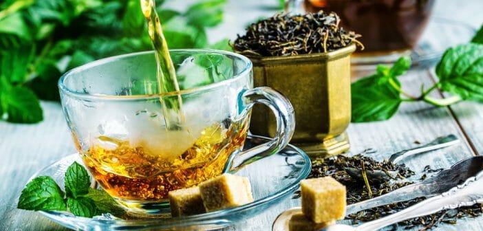 Quel est le meilleur thé pour maigrir ? - Le blog Anaca3.com