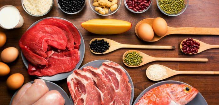 Un régime protéiné le soir fait-il maigrir ? - Le blog