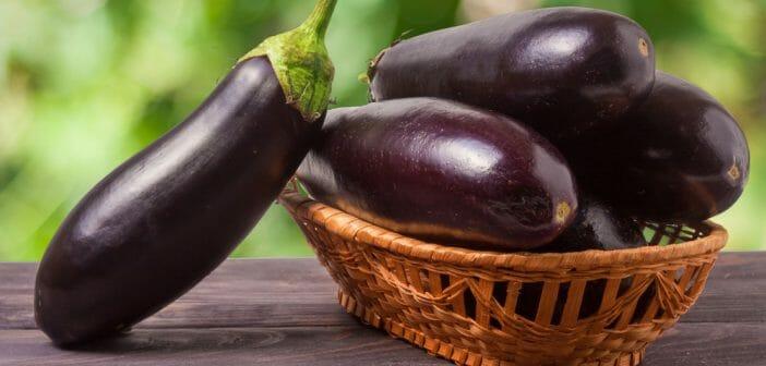 L'aubergine pour brûler la graisse du ventre