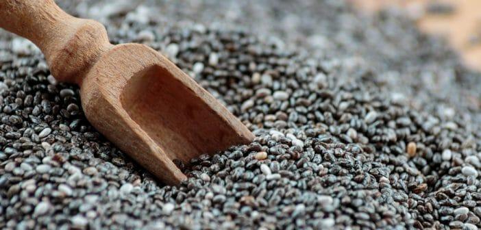 Les graines de chia pendant un r gime une bonne id e le blog - Graine de chia coupe faim ...