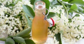 Le pectine de pomme pour mincir le blog for Maigrir avec des plantes