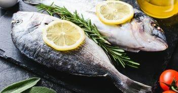 Les sashimis font ils grossir le blog for Manger pour poisson