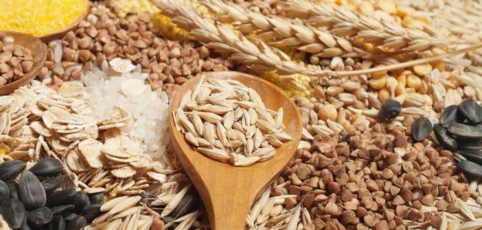 Top 10 des céréales qui font maigrir