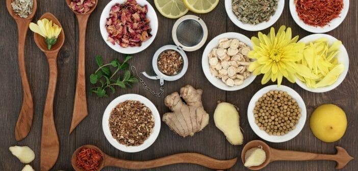 10-aliments-fondre-bourrelets