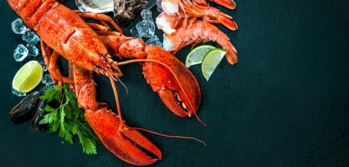 3-crustaces-caloriques