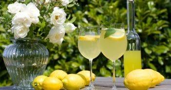 combien-de-calories-compte-limoncello