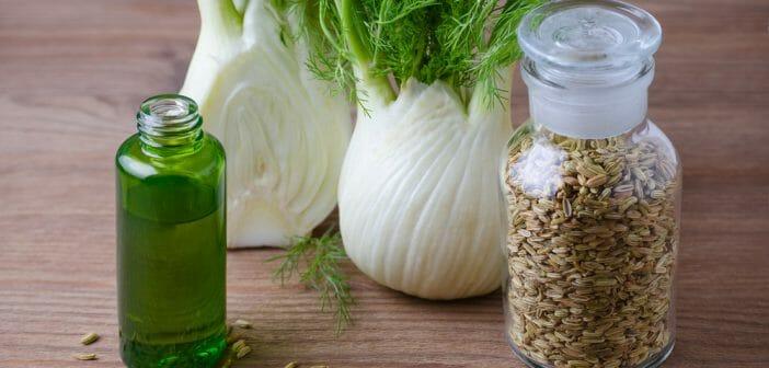 L huile essentielle de fenouil est elle un coupe faim - Huiles essentielles coupe faim maigrir ...