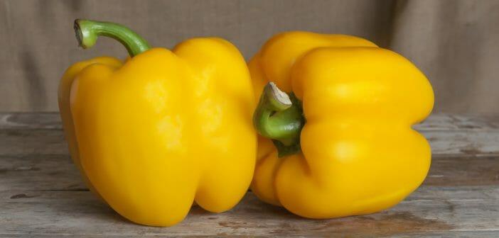 poivron-jaune-calories