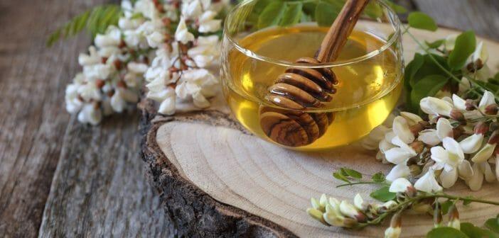 Le miel d acacia fait il grossir le blog - Le potimarron fait il grossir ...