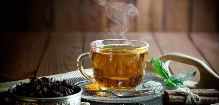 Le thé Catherine fait-il maigrir ? - Le blog Anaca3.com