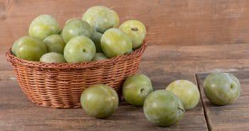 Combien de calories dans la prune Reine-Claude ?