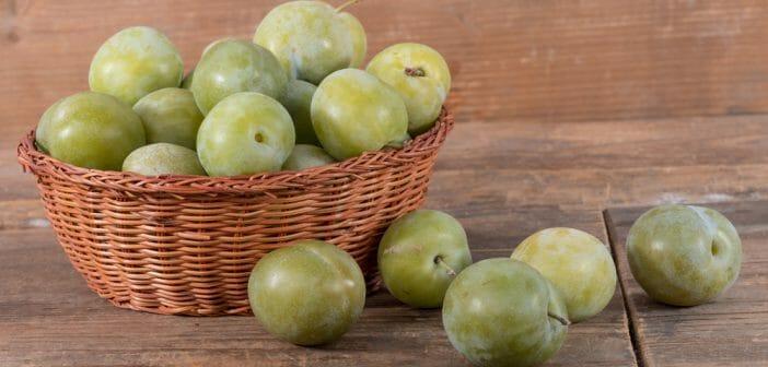 How many calories in plum Queen-Claude?