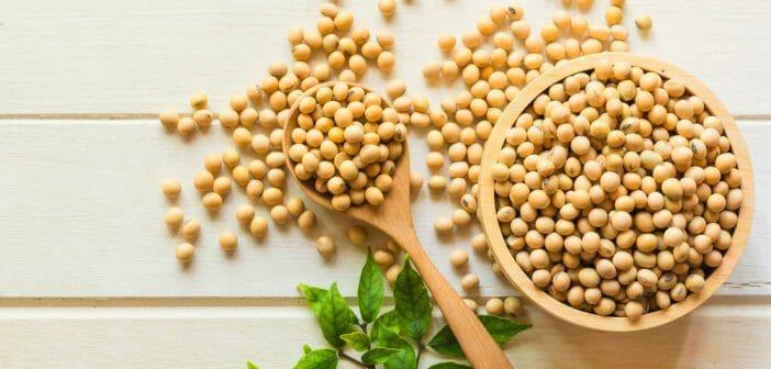 Combien de calories dans le soja jaune ?